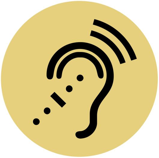 CPL Workshop Image: Listening Politics